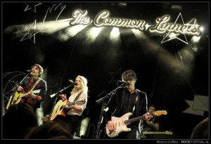 The Common Linnets 10-12-2015 Paard 007 door Monica Duffels