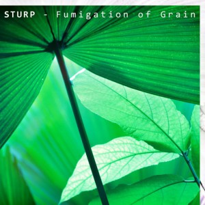 cover sturp fugimation of grain