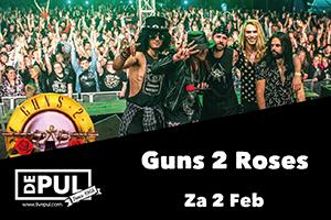 De Pul - Guns 2 Roses