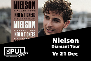 De Pul - Nielson